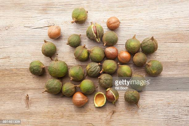 Macadamia nuts in the shell on wood