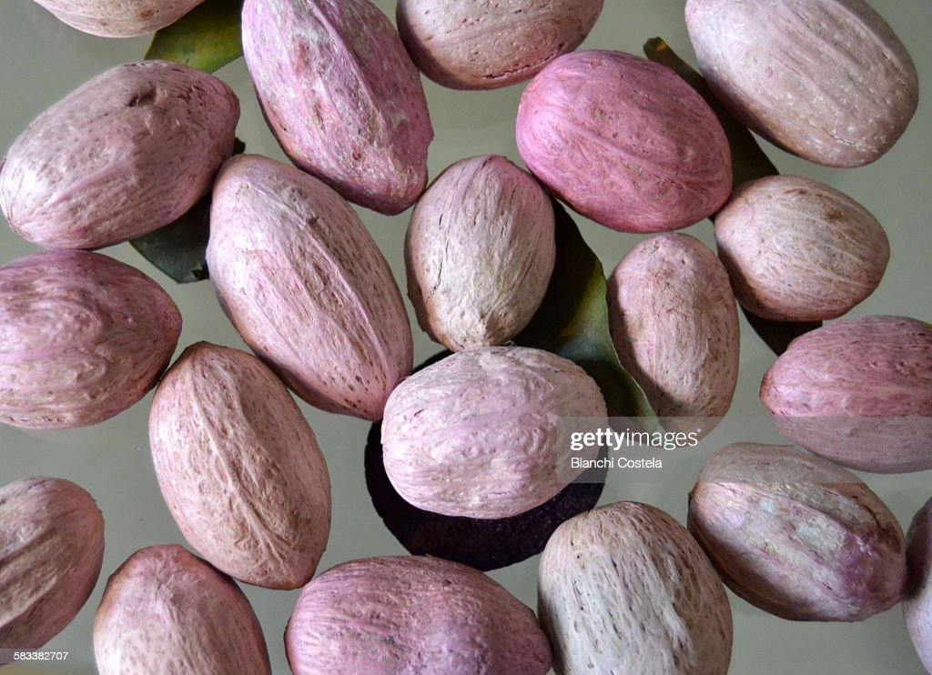 Macadamia nuts on a table : Stock Photo