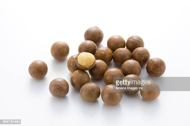 macadamia nuts - macadamia nut stock photos and pictures
