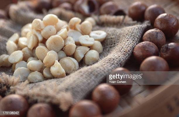 Macadamia nuts ready for consumption at the Mae Fah Luang royal agricultural project in Chiang Rai province northern Thailand Macadamia nuts are...