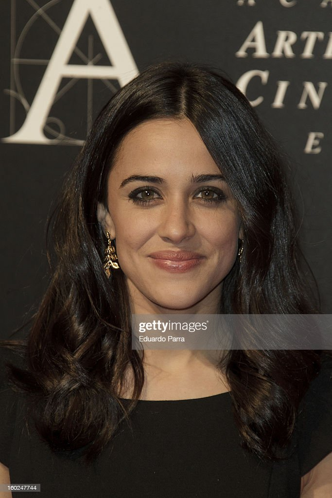 Macarena Garcia attends Goya awards final candidates party photocall at El Canal theatre on January 28, 2013 in Madrid, Spain.