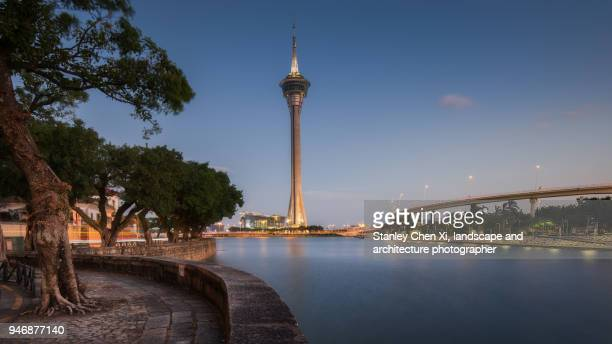 macau tower night view - macao stock pictures, royalty-free photos & images