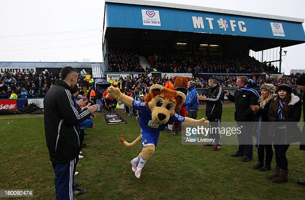 Macclesfield Town mascot Roary the Lion leads the teams out ahead of the Budweiser FA Cup fourth round match between Macclesfield Town and Wigan...