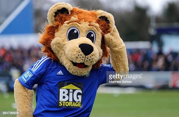 Macclesfield Town mascot Roary the Lion