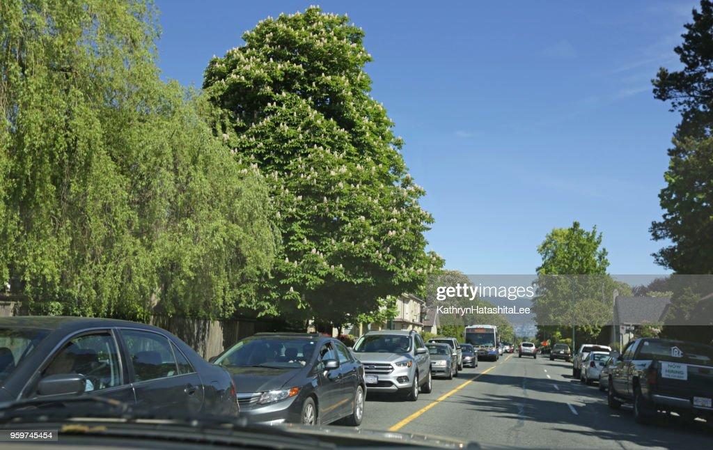 Macdonald-Straße in Kitsilano Nachbarschaft, Vancouver, Kanada : Stock-Foto