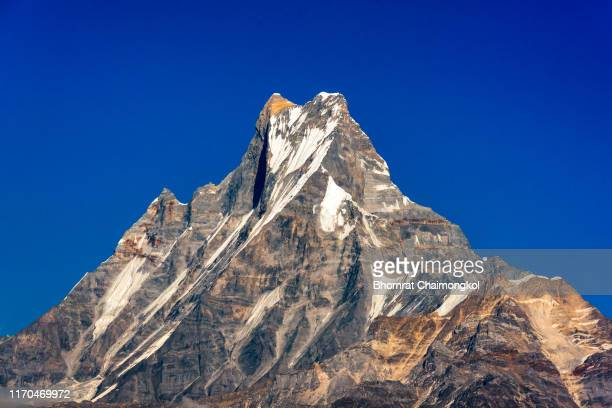 machapuchare or fishtail mountain with blue sky view from tadapani at nepal. - annapurna south stock photos and pictures