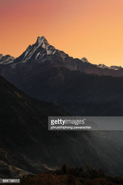 machapuchare peak during sunrise. - machapuchare stock photos and pictures