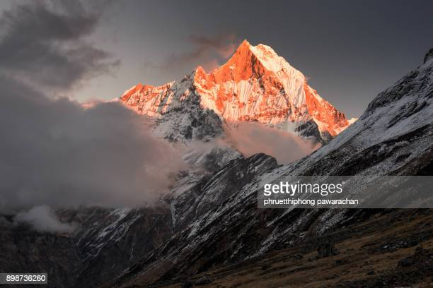 machapuchare peak during sunset. - annapurna conservation area stock photos and pictures