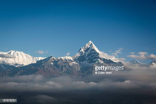 machapuchare (6993m) - didier marti stock photos and pictures