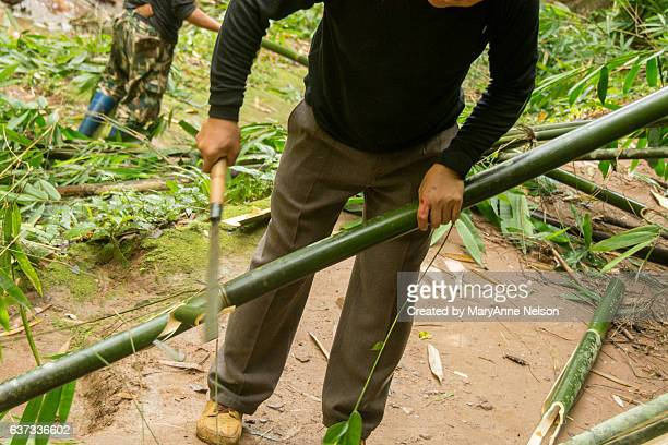 machete cutting of bamboo - bamboo instrument stock photos and pictures
