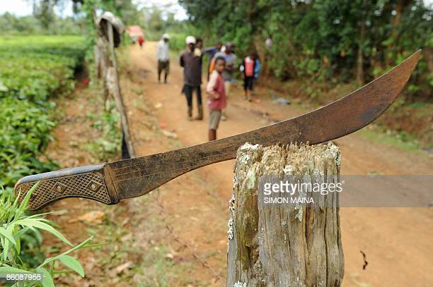 A machete is stuck on a wood stump near Kiangomara village on April 21 2009 after residents organised in small groups armed with crude weapons...