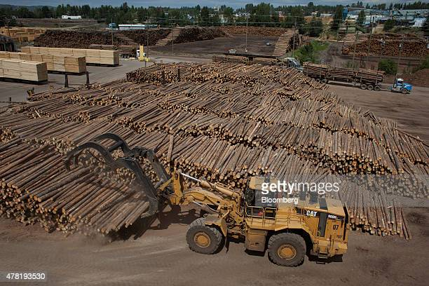 A machine unloads logs for processing at the West Fraser Timber Co sawmill in Quesnel British Columbia Canada on Friday June 5 2015 Since the late...