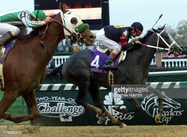 Macho Uno with jockey Jerry Bailey leads Point Given and jockey Gary Stevens to the finish line in the Breeders' Cup Juvenile 04 November 2000 at...