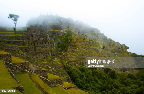 Machu Picchu, Peru: Green Terraces, Ruins, Fog