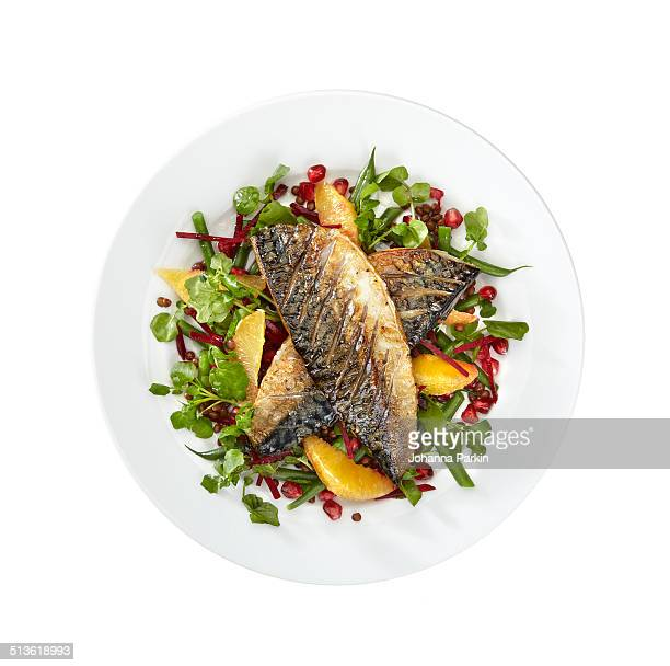 mackerel and orange salad on white plate - 魚介類 ストックフォトと画像
