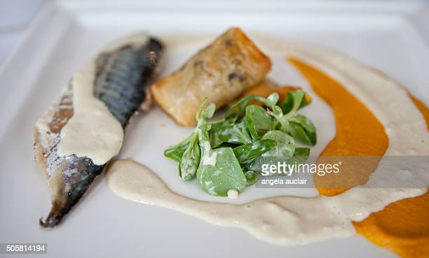 Mackerel Filet with salad and condiments