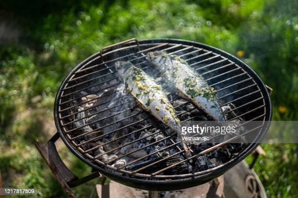 バーベキューでサバの魚 - オキスズキ ストックフォトと画像