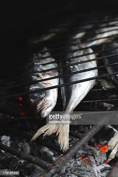 Mackerel on the Grill