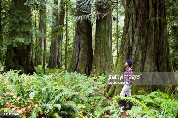 MacMillan Provincial Park Cathedral Grove Vancouver Island Wonderlust Hiking Journey
