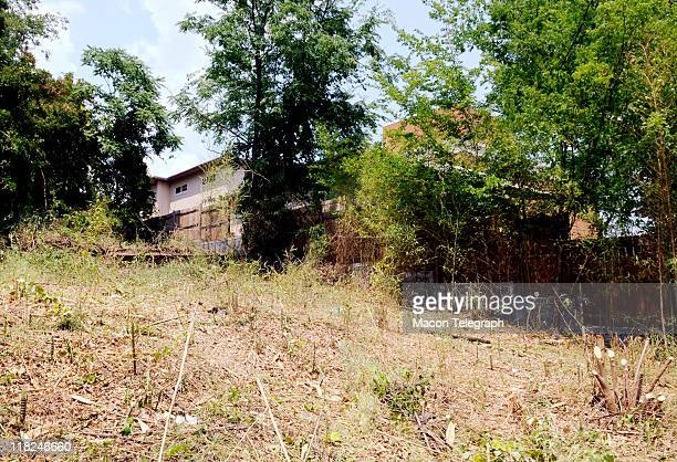 Privet and bamboo was cut down by Macon Police and Macon/Bibb Fire Department and Macon Public Works in a wooded area located near Lauren Giddings...