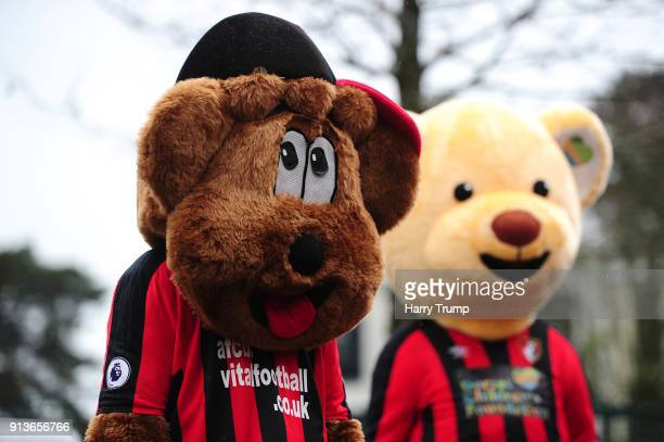 Macots during the Premier League match between AFC Bournemouth and Stoke City at Vitality Stadium on February 3 2018 in Bournemouth England