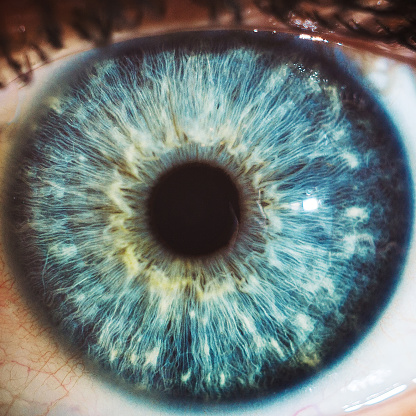macro blue eyes color 1067404170