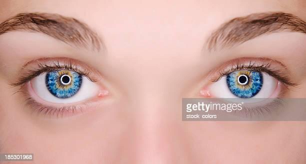 macro blue eyes