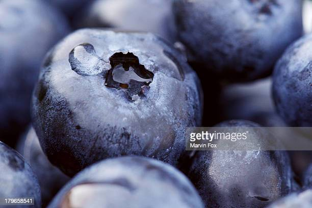 Macro blueberries