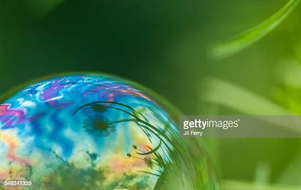 Macro Bubbles