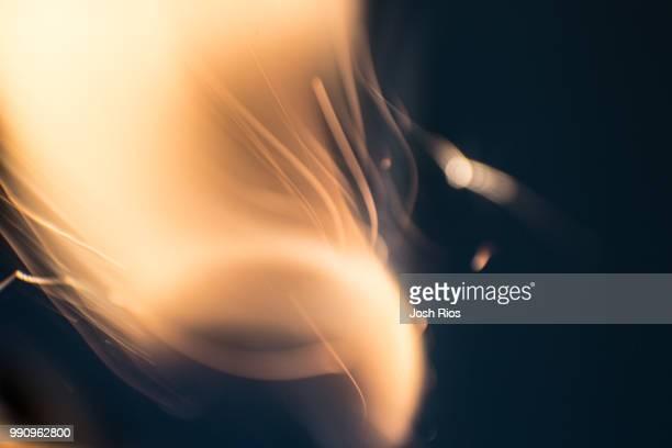 macro flare - blendenfleck stock-fotos und bilder