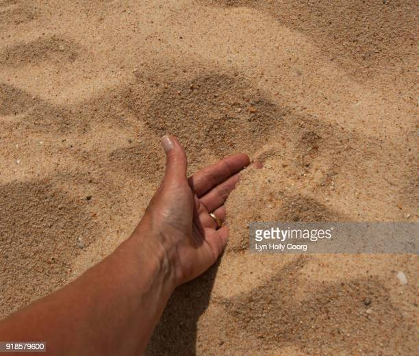 macro of hand in sand - lyn holly coorg stock pictures, royalty-free photos & images