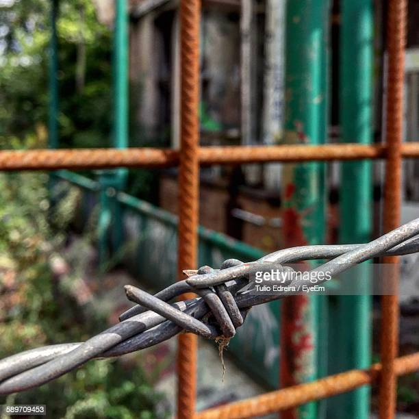 Macro Shot Of Barbed Wire Fence