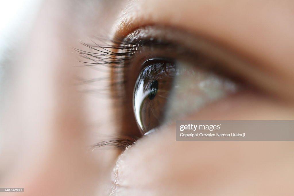 Macro shot of human eye : Stock Photo