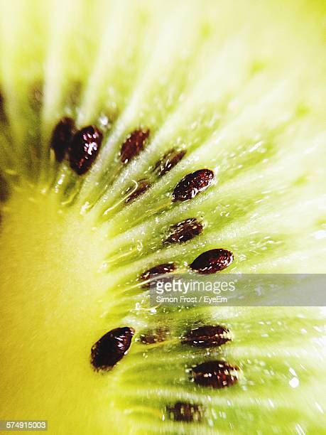 macro shot of kiwi slice - juicy stock pictures, royalty-free photos & images