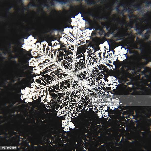 Macro Shot Of Snowflake