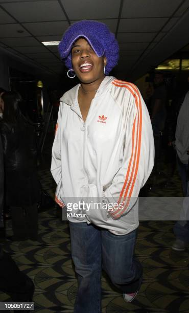 Macy Gray during Paid In Full Premiere New York at Loews 19th Street East Theather in New York City New York United States