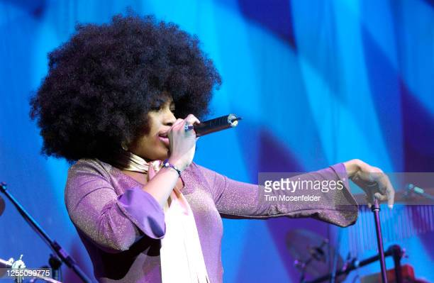 Macy Gray performs at HP Pavilion on January 27, 2004 in San Jose, California.