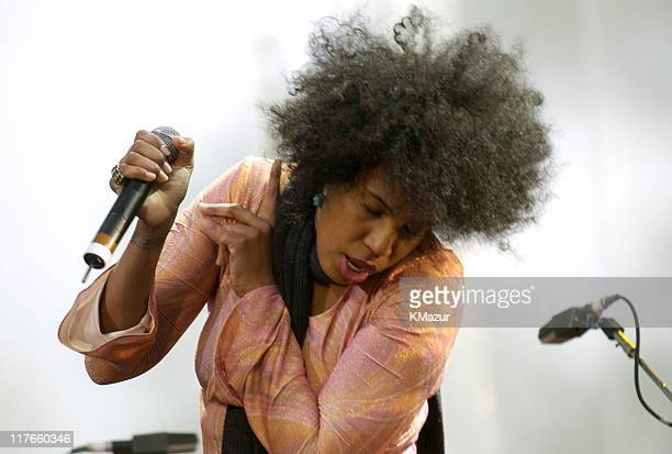 Macy Gray performs at the American Express Concert in NYC during The 3rd Annual Tribeca Film Festival