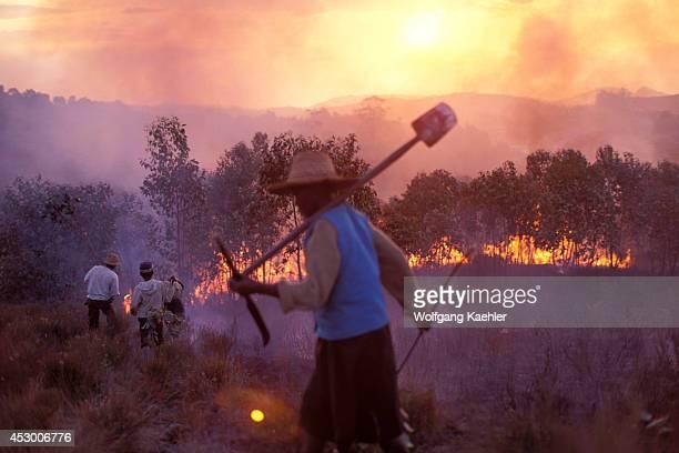 Madagascar Near Mantasoa Farmers Burning Land