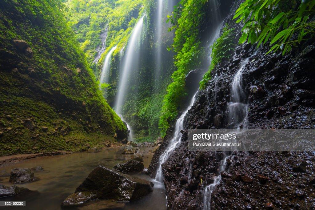 Madakaripura waterfall, attraction place of Probolinggo near Bromo volcano mountain, East Java, Indonesia : Stock Photo