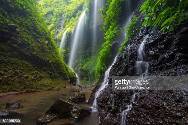 Madakaripura waterfall, attraction place of Probolinggo near Bromo volcano mountain, East Java, Indonesia