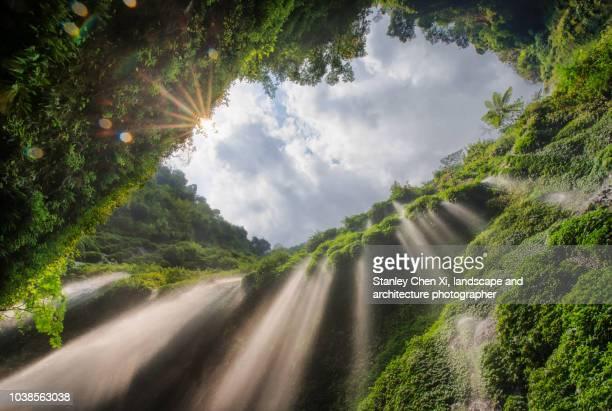 madakaripura waterfall - waterfall stock pictures, royalty-free photos & images