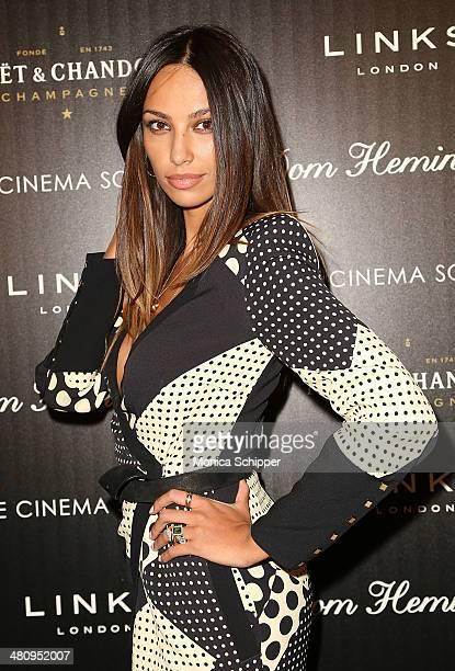 Madalina Diana Ghenea attends The Cinema Society Links of London screening of Fox Searchlight Pictures' 'Dom Hemingway' at Landmark Sunshine Cinema...