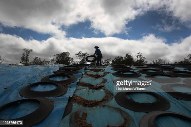 Maddie Penfold prepares to pull back tarp covering silage for cattle feed at Mamaree on January 19, 2021 in Meandarra, Australia. COVID-19 and the...