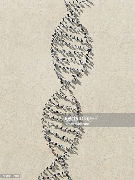 DNA made out of walking people