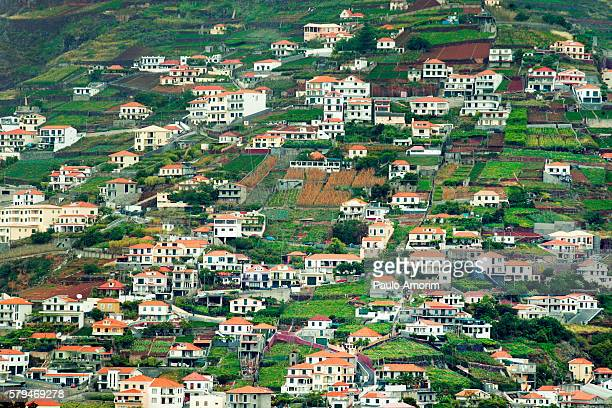 madeira island territory of portugal - general view stock pictures, royalty-free photos & images
