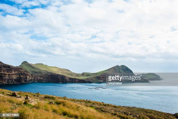 madeira landscape without people - subtropical climate stock photos and pictures