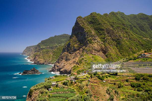 madeira summer - lareira stock pictures, royalty-free photos & images