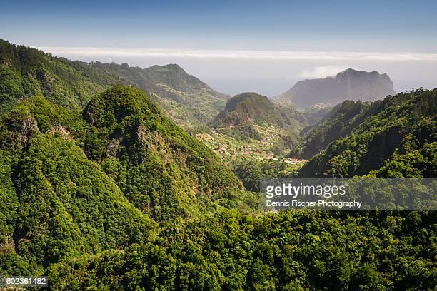 Madeira the green island