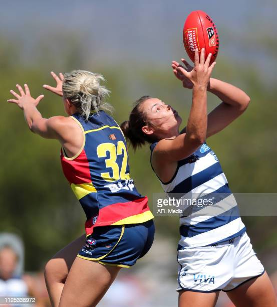 Madeline Boyd of the Cats marks the ball in front of Marijana Rajcic of the Crows during the 2019 NAB AFLW Round 03 match between the Adelaide Crows...